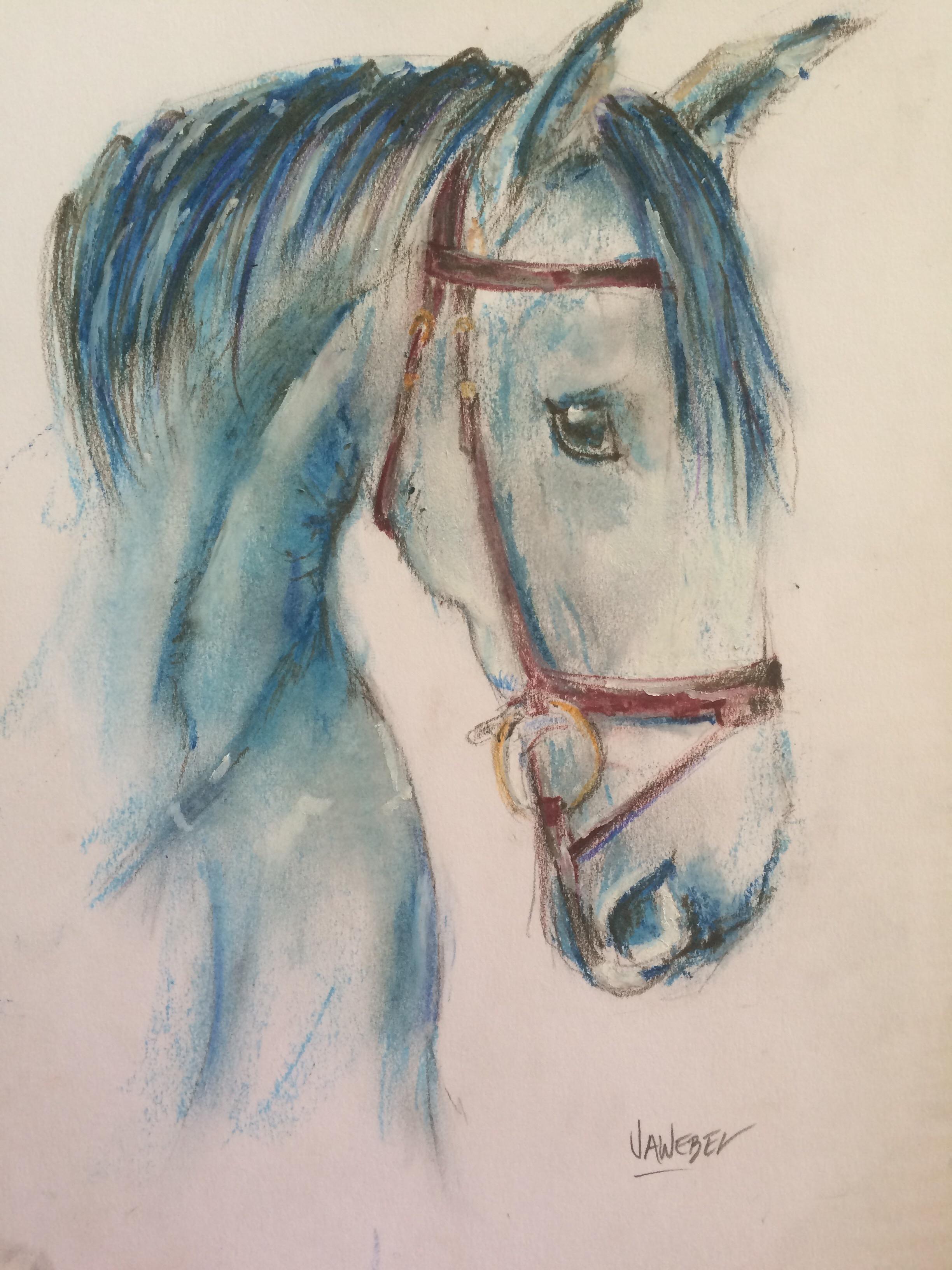 Horse Bluehorse Caballo Oilpastel Image By Jawebel