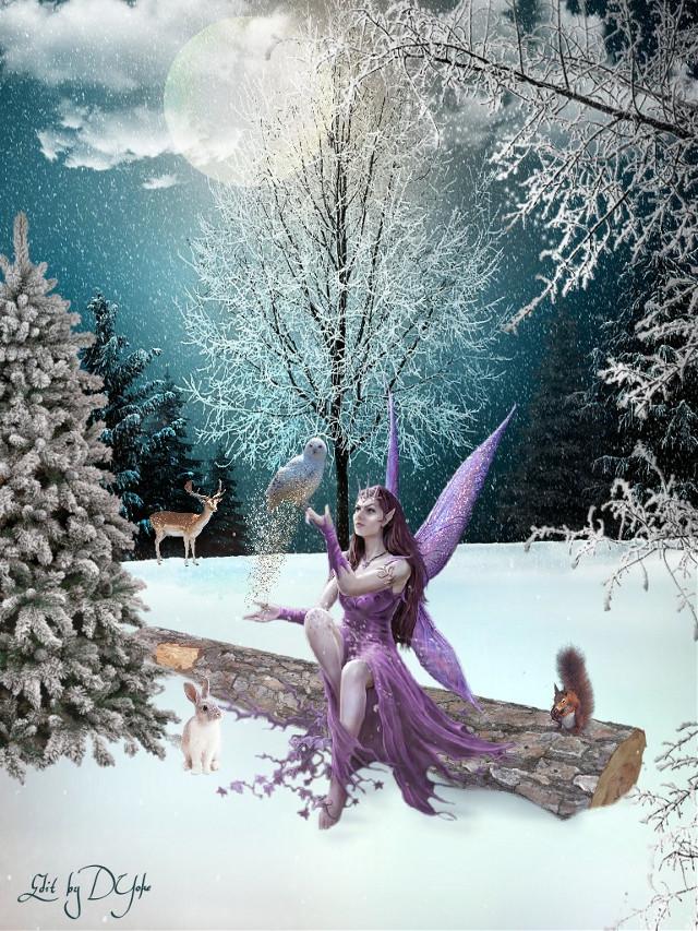 , #winterfantasy, #petsandanimals