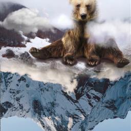 freetoedit bear
