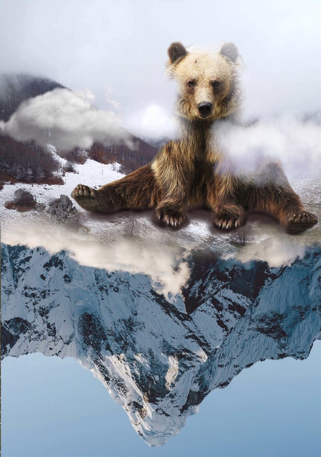 #freetoedit #bear