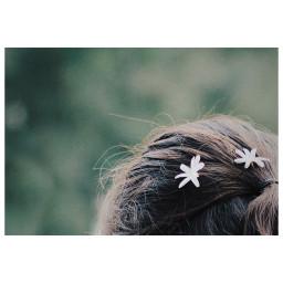 flowers white hair
