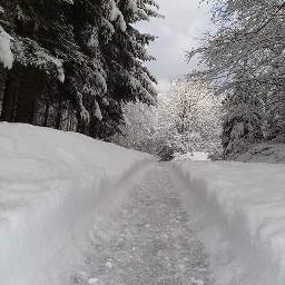 freetoedit winterlove