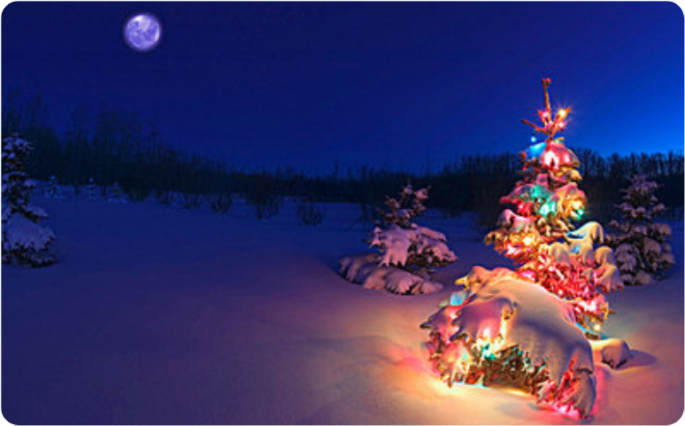 #christmaslights #christmastree #winter #night #snow #moon #background