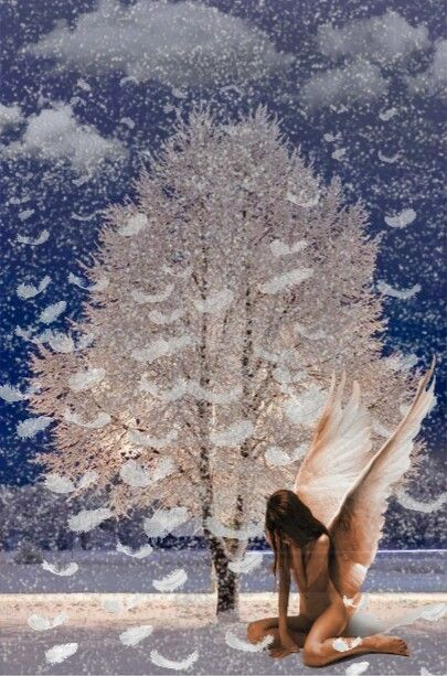 #photography #sureal #winter #snow#nature #interesting
