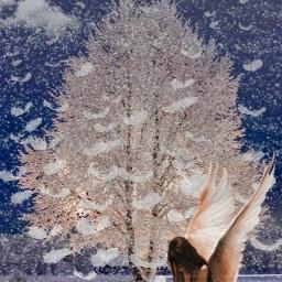photography sureal winter snow freetoedit