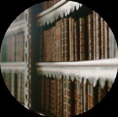 shelf book books library brown freetoedit