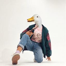 freetoedit duckface surreal animal goose
