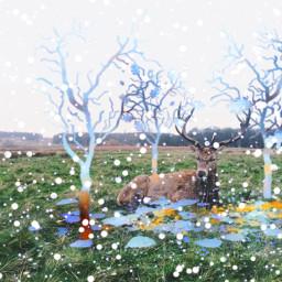 freetoedit reindeer picsart