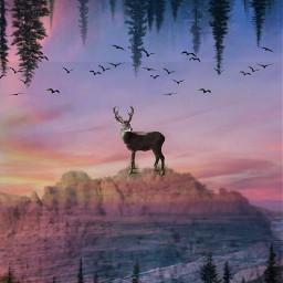 deerremix freetoedit myedit doubleexposure mountains