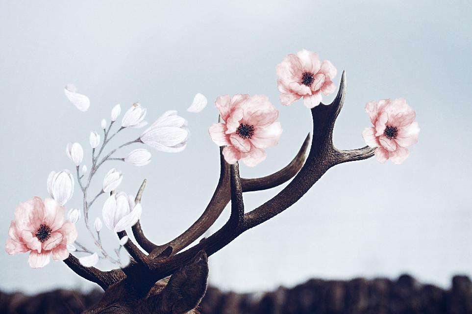 #freetoedit #deerantlers #flowers #dodgereffect #deer #pink #pinkflowers #nature #art #interesting #madewithpicsart #picsart #deerremix