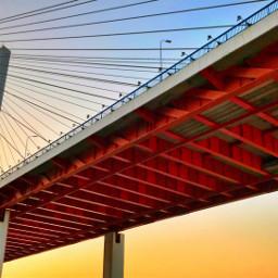 shanghai bridge bridgeview sunrise sunrisephotography