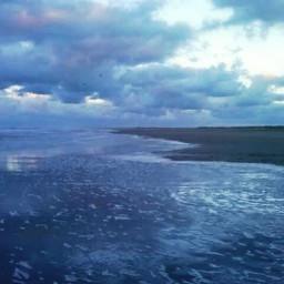 vibranteffect beach sea winter freetoedit