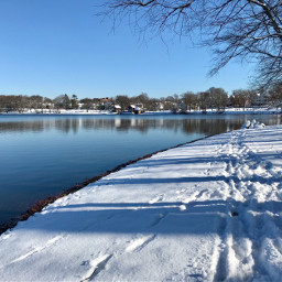 freetoedit snow nature footprints tracks