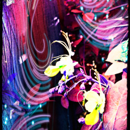 flowers naturelovers beautiful colorful maskeffects