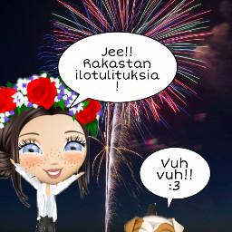 fireworks newyear dogs cute