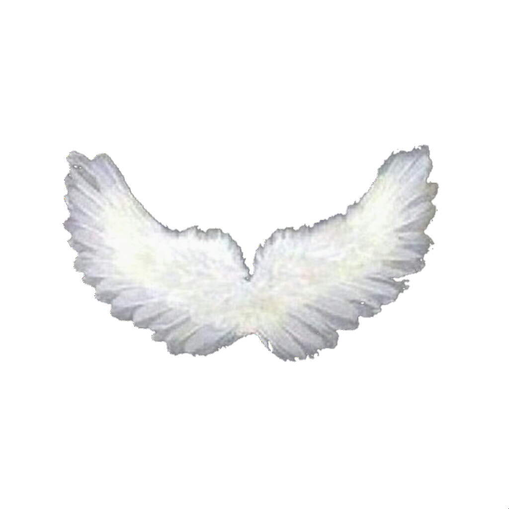 Overlay Overlays Wings Wing Angel Resource Resources