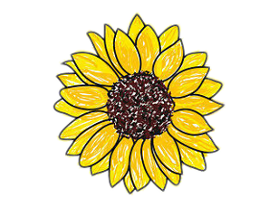 the newest girasol stickers on picsart free clip art images of flower garlands free clipart picture of flowers