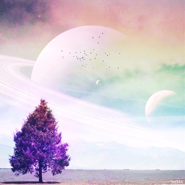 #freetoedit msgic world. #remixit #remix #cool #hdr #colorful #fun #tree #world moa @freetoedit @pa