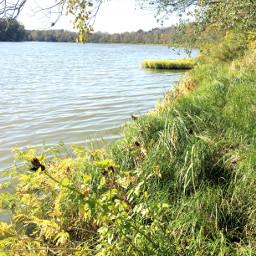 summervibes summer naturephotography river nature