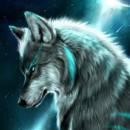 wolfart wolf blue howihue space freetoedit