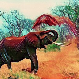 creativeart art becrearive wildlifeanimals wildlife
