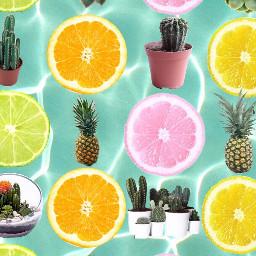 freetoedit remixit aesthetic succulents lime