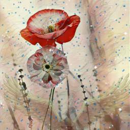freetoedit myworld mymind angels nature