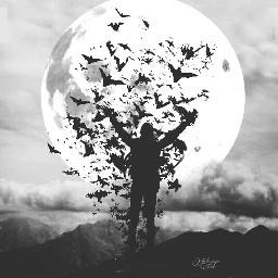 remixit darkart emotions surreal nature