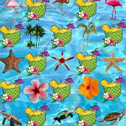 tropical fruit animal plant starfish