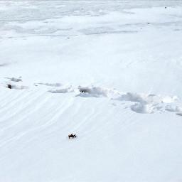 freetoedit tracks footprints snow frozen
