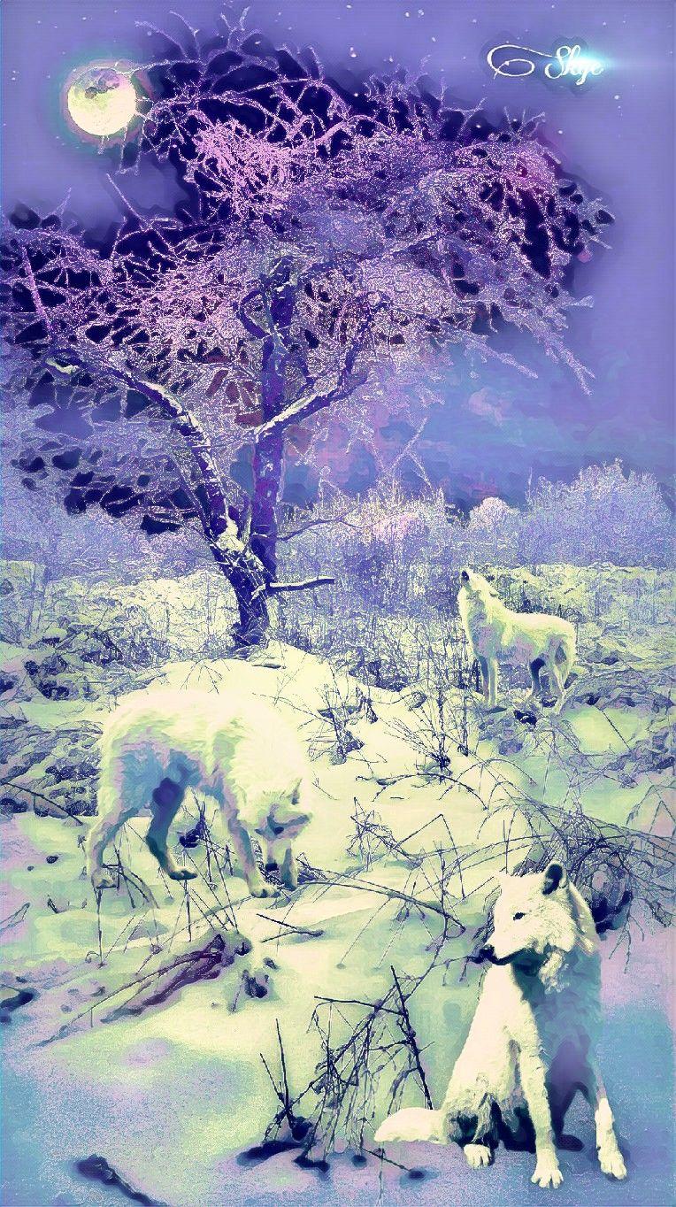 #scenery #art #wolf #gk #meme #rose #animal #snow #winter #remix #remixit #home #horses #zombie #selfie #assassinscreed #girl #zoo