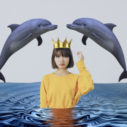 girlinyellowremix freetoedit dolphin sea ocean