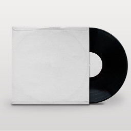 freetoedit white minimal vinyl black