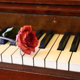 pcpiano piano remix colorful remixme freetoedit