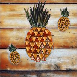 scfruits