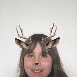 deerfilter