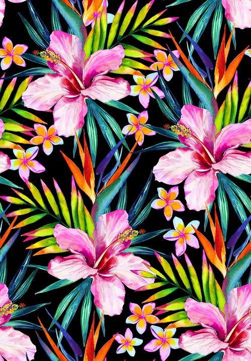 Flores Tumblr Fondos Image By Xxxxcataxxxx