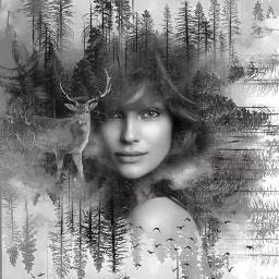 doubleexplosure womanface nature deer myedit freetoedit