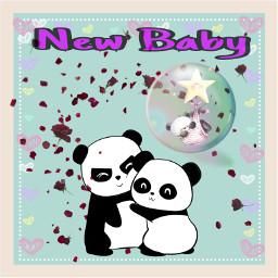 freetoedit greetingcard newbaby pandas bubble