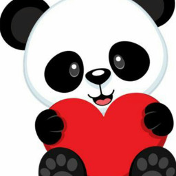 osopanda🐼 dcpanda panda osopanda