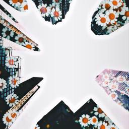 freetoedit double_exposure floral urbanism building