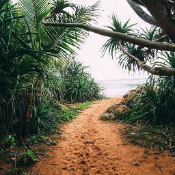 freetoedit travelbackgrounds travel backgrounds wanderlust