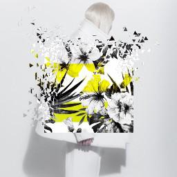 womn fashion fashionreadyremix minimal minimalistic freetoedit