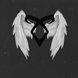 shadowhunters alas runas vuela poderangelical