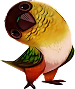 scparrot parrot freetoedit