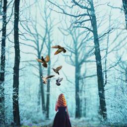 freetoedit forest girl alone flyingbird