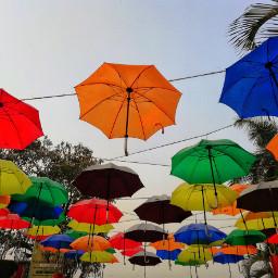 freetoedit colourful umbrella