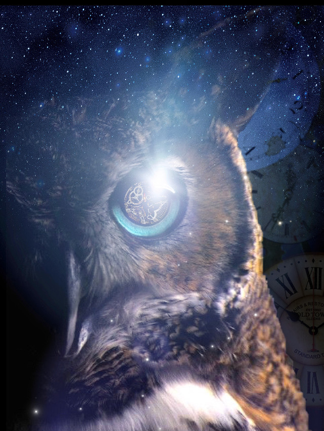#freetoedit #interesting #timeless #surrealism #owl #night #editingbyme #sticker #vision #clear #clocks #time #mybackground #stars