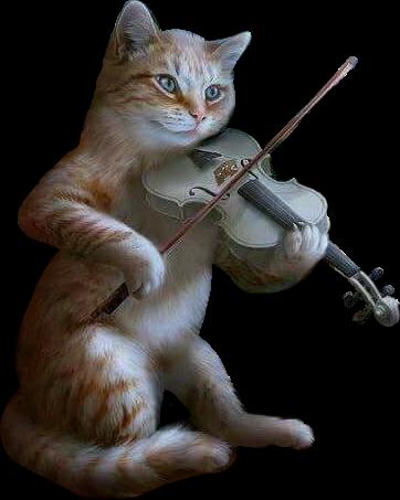Cat Violin Music Feeling Sticker By محمد سالم