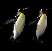penguin friends friend bff bestfriend freetoedit